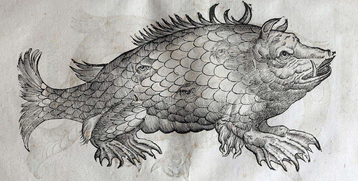 ulisse_aldrovandi_monstrorum_historia_per_nicola_tebaldini_bologna_1642_082_mostro_sottomarino